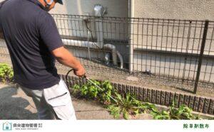 空き家管理 厚木市 海老名市 空き家問題 雑草 対策